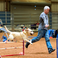 Bell County KC Obedience Rally and Agility April 3 4 and 5