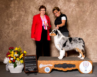 Sunday Breed Win Previews