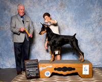 Thursday Breed Judging Win Previews
