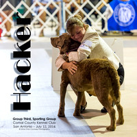 River City Cluster of Dogshows San Antonio July 2014